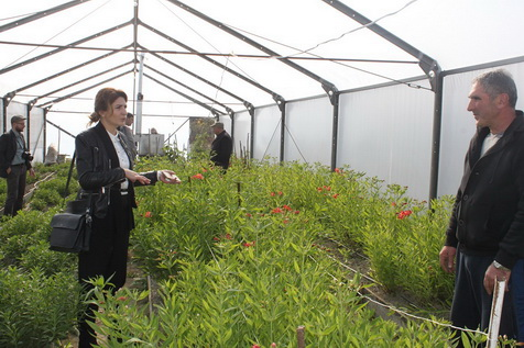 Flower Cultivation for Women's Cooperatives