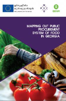 PUBLIC PROCUREMENT SYSTEM OF FOOD IN GEORGIA